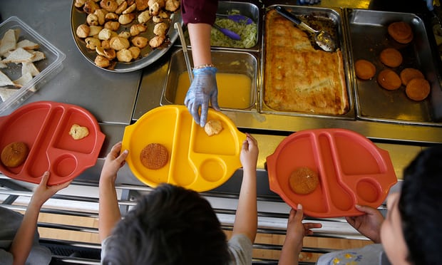 First comprehensive review of food education in schools finds huge disparity in standards