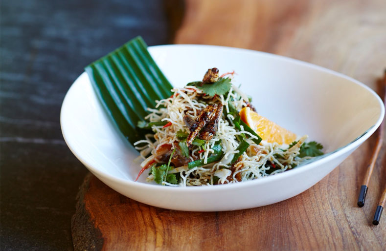 Time to embrace eating insects?