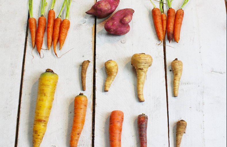 Why I care about food waste – and how it became my business!