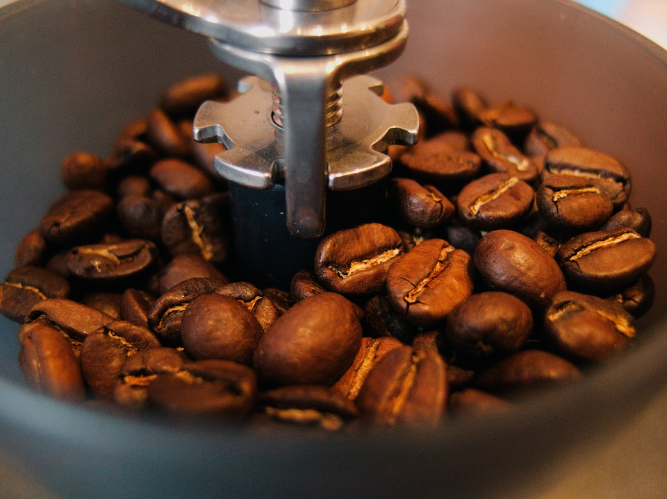 Coffee beans sit inside of a burr grinder